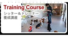 シッター&トレーナー養成講座